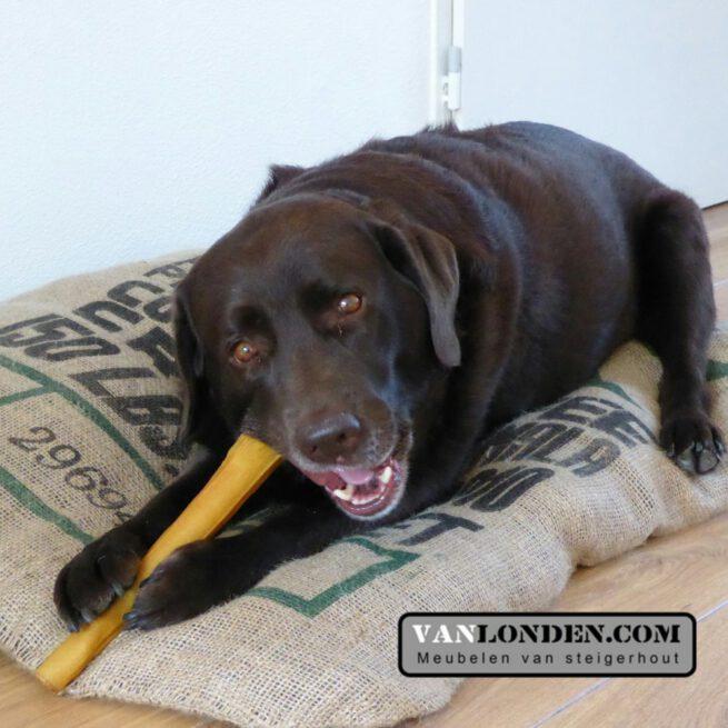 Hondenkussen Boy (Koffiebonen zakken online bestellen)